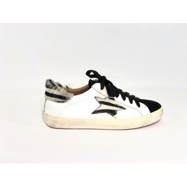 Crown Sneaker Stella Zebra